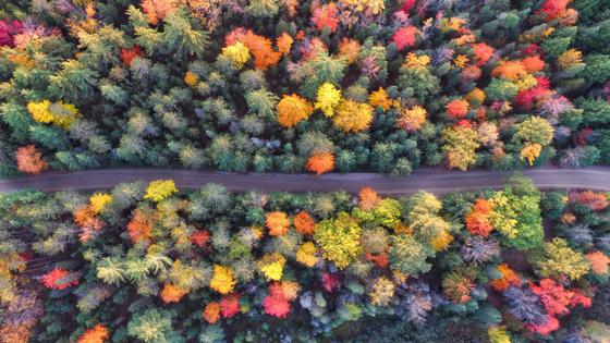 A Season of Life – by Paul Gilbertson